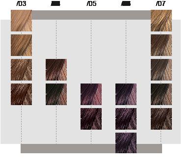 19 Inspirational Wella Innosense Color Chart